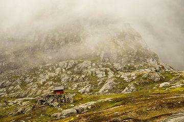 Märchenhafte Welt. Nebeltag, eine grüne Landschaft mit einem See von Karijn | Fine art Natuur en Reis Fotografie