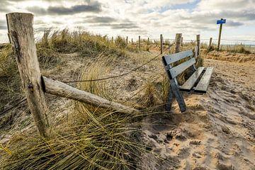 duinen bij Egmond van Peter Heins