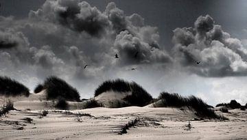 Terschelling, Wadden - meeuwen, wolken, duinen, storm van Robert-Jan van Lotringen