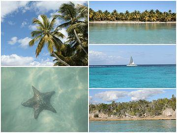Karibik Reise Urlaub Fotocollage