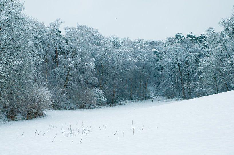 Sneeuwlandschap van Douwe Schut