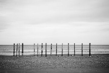 Wood poles in the sand, Schiermonnikoog III von Luis Fernando Valdés Villarreal Boullosa