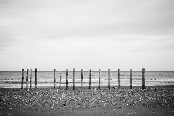 Wood poles in the sand, Schiermonnikoog III van Luis Fernando Valdés Villarreal Boullosa