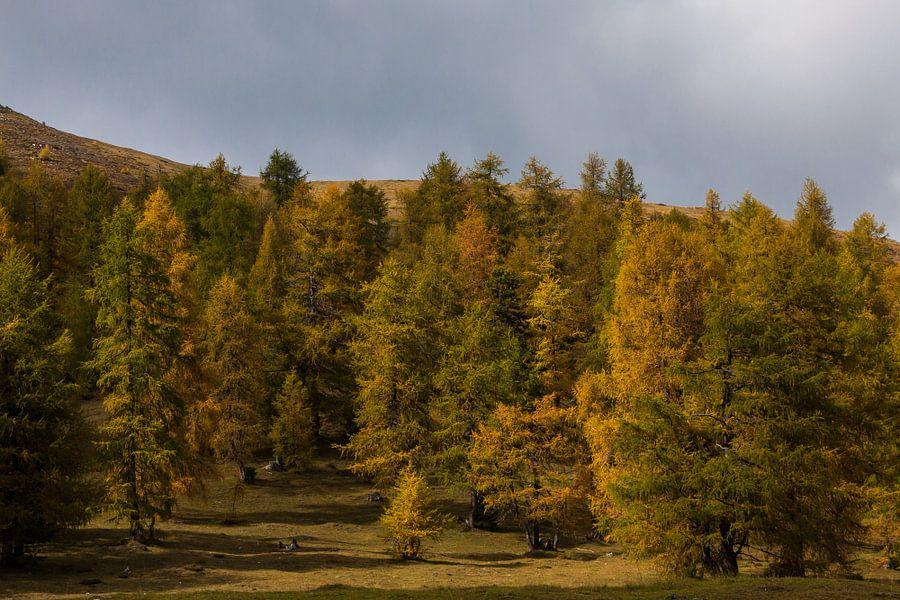 Herfst in de Alpen
