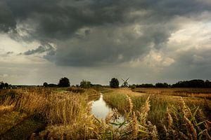Herfst in Groningen van Bo Scheeringa