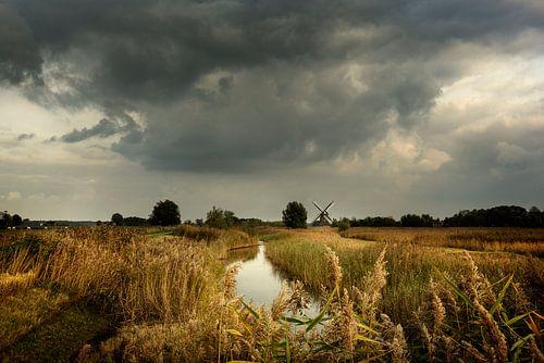 Herbst in Groningen von Bo Scheeringa