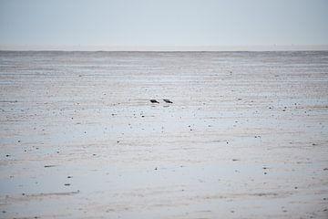 Paar auf dem Wattenmeer von Remke Spijkers