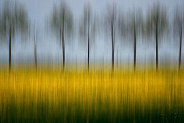 Bäume von Ellen Snoek