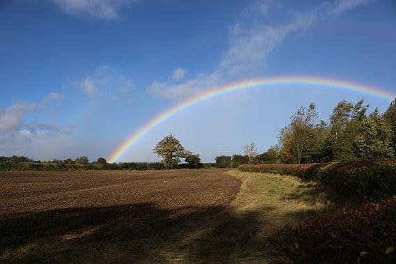 Rainbow in Blue van Joost Ligthart