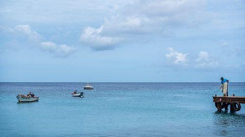 Playa Grandi, Curaçao van Bart De Brabander
