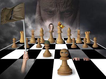 Chess van Ton Buijs