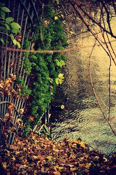 natuur / Nature van melissa demeunier