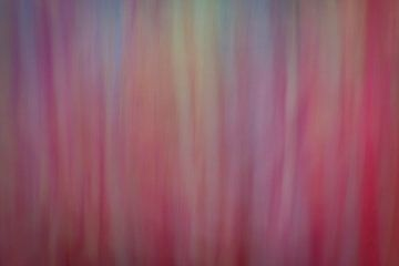 Fantasie in roze en paars von Karin Tebes