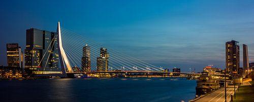 Rotterdam , skyline met Erasmusbrug (Large)