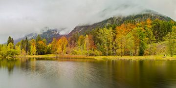 Herfst in Allgäu van Walter G. Allgöwer