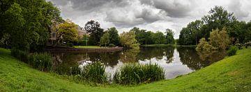 Het Vondelpark von Thomas van der Willik