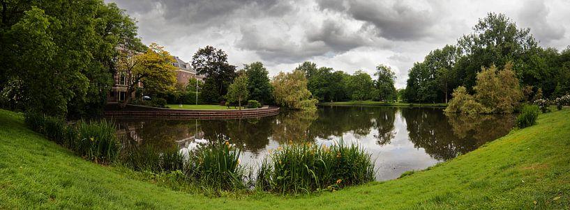 Het Vondelpark van Thomas van der Willik