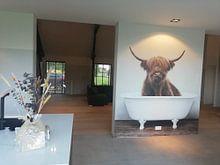 Klantfoto: Grappige Schotse Hooglander van Diana van Tankeren, als naadloos behang