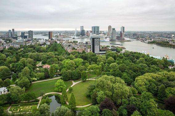 Harmony of the Seas in Rotterdam
