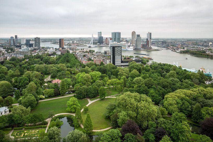 Harmony of the Seas in Rotterdam von MS Fotografie | Marc van der Stelt