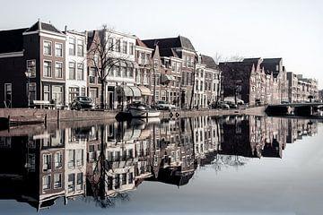 Perfecte reflectie in het water van