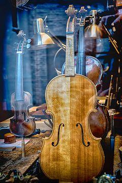 Geige von Ferry Noothout