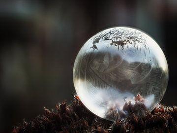 Bevroren zeepbel #3 van Lex Schulte