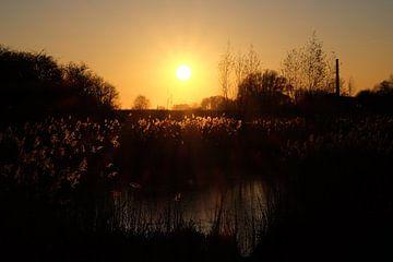 Landschap met een ondergaande zon. van Myrte Wilms
