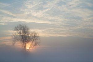 Zonsopgang door de mist van Rene Metz