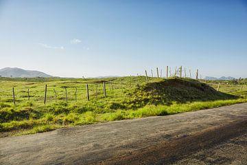 Blick auf das Valle de Viñales im Westen Kubas von Tjeerd Kruse