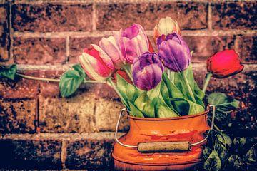 Tulpen in de emmer. van