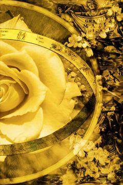 Gelbe Rose umgeben von einer alten Landkarte, rechte Hälfte. von Helga Blanke