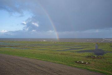 Het fryske wad bij Moddergat, met regenboog. van