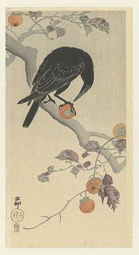 Corbeau au fruit du kaki, Ohara Koson
