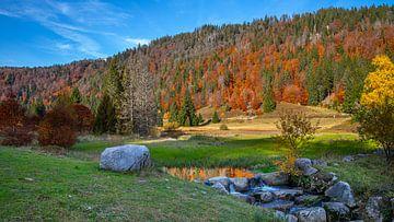 Menzenschwander Albtal in de herfst van Alexander Wolff