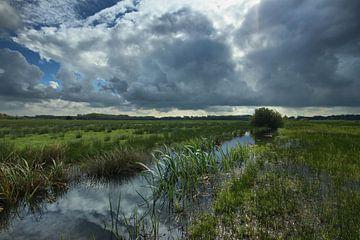 Wolken über dem Den Haager Beemdenbos von Cees van Gastel