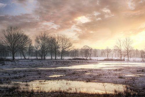 Wintermorgen in Kempen-Broek natuurgebied