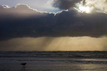 Woelige golven tijdens storm met zonsondergang van Menno van Duijn