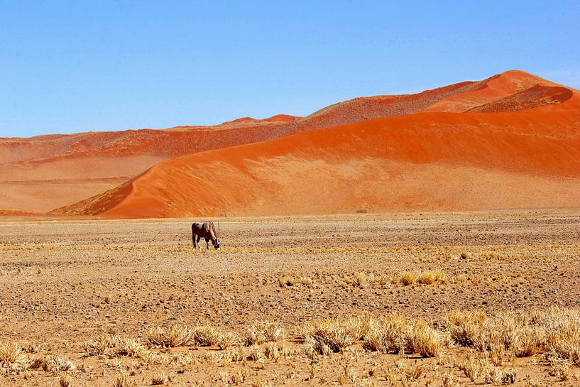 Oryx, rode zandduinen Sossusvlei, Namibië van Inge Hogenbijl