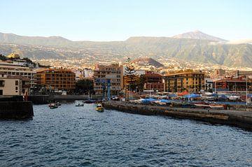 Vissershaven van de toeristische badplaats Puerto de la Cruz van kanarischer Inselkrebs Heinz Steiner