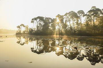 Sonnenaufgang bei der Voorste Goorven von Miranda Rijnen Fotografie