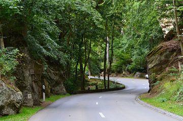 Endless Road sur Paul Francken
