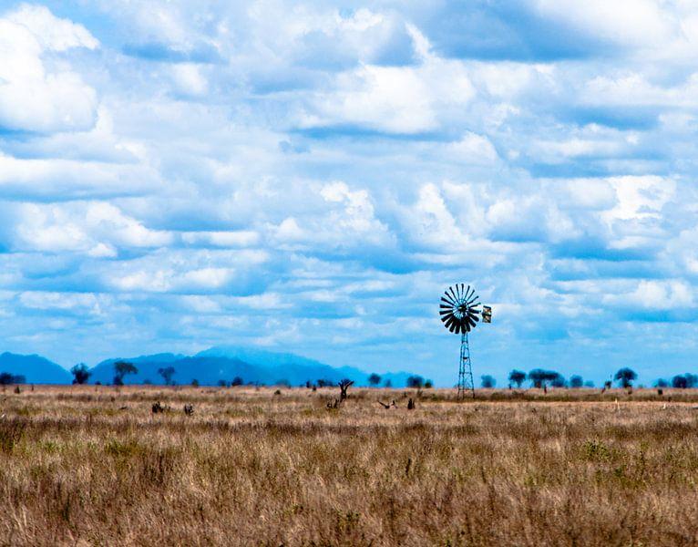 Savanna Windmill van Alex Hiemstra