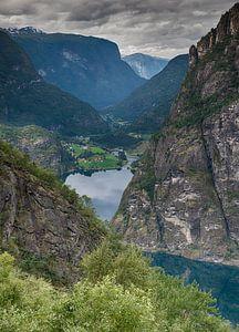 uitzicht op aurlandfjord in noorwegen