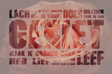 Roze roos met tekst geniet sur Stedom Fotografie