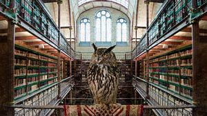 UIL - Bibliotheek Rijksmuseum Amsterdam van Hannie Kassenaar
