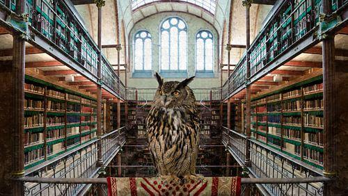 EULE - Bibliothek des Rijksmuseum Amsterdam von Hannie Kassenaar