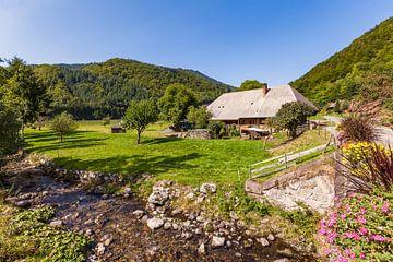 Schwarzwaldboerderij in de buurt van Todtnau in het Zwarte Woud van Werner Dieterich