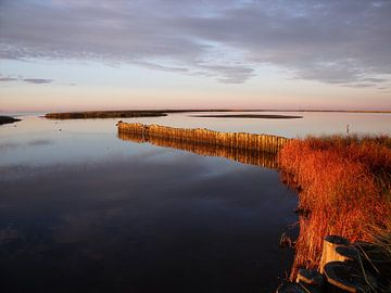Zonsopkomst aan de Oostzee van Pieter Korstanje