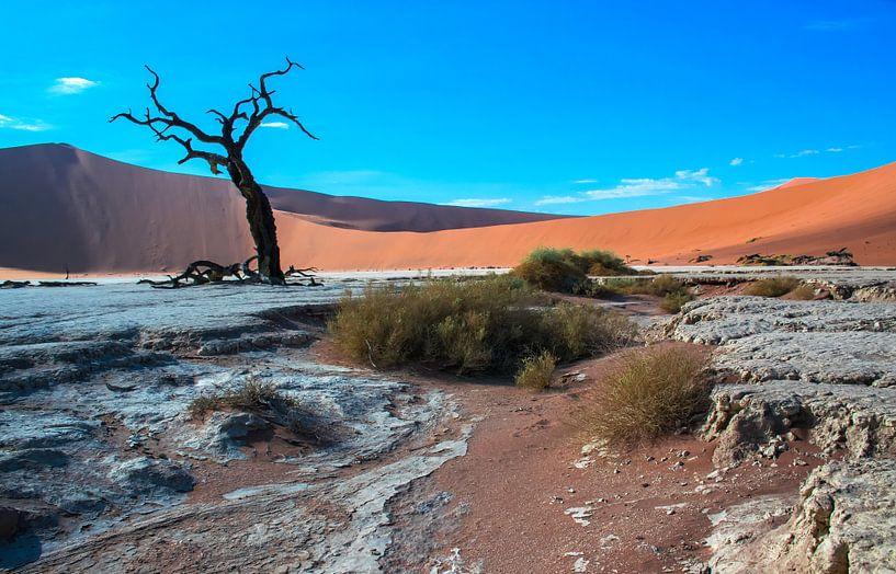 Door de zon geblakerde boom in de Deadvlei, Namibië van Rietje Bulthuis